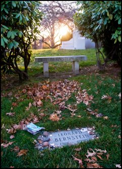Leonard_Bernstein_Grave,_Sunset,_Green-Wood_Cemetery
