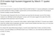 tall tsunami