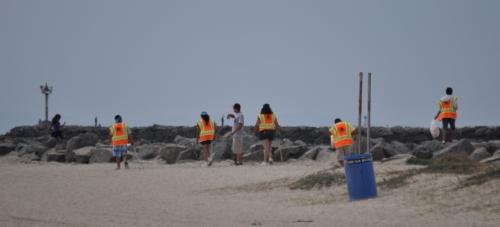 Beach cleaning volunteers