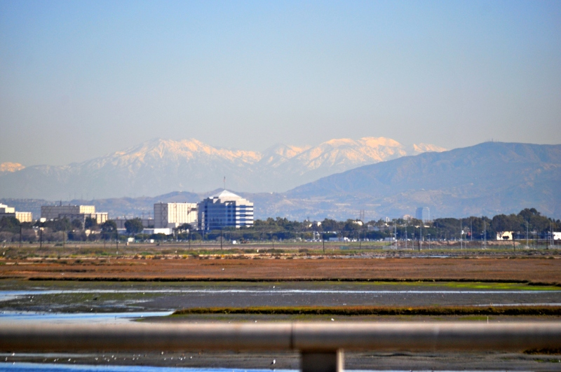 New Mountain Snow (from Bolsa Chica)