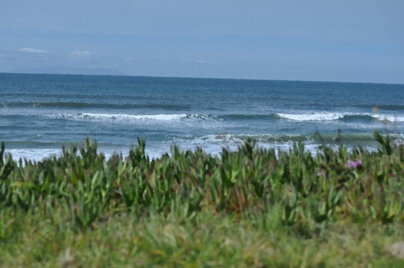 Bolsa Chica Beach Nature Preserve (my digital oil paintings photographic memoirs)