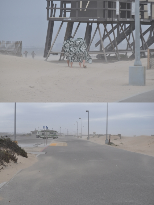 Spring Sand Storm_Bolsa Chica State Beach