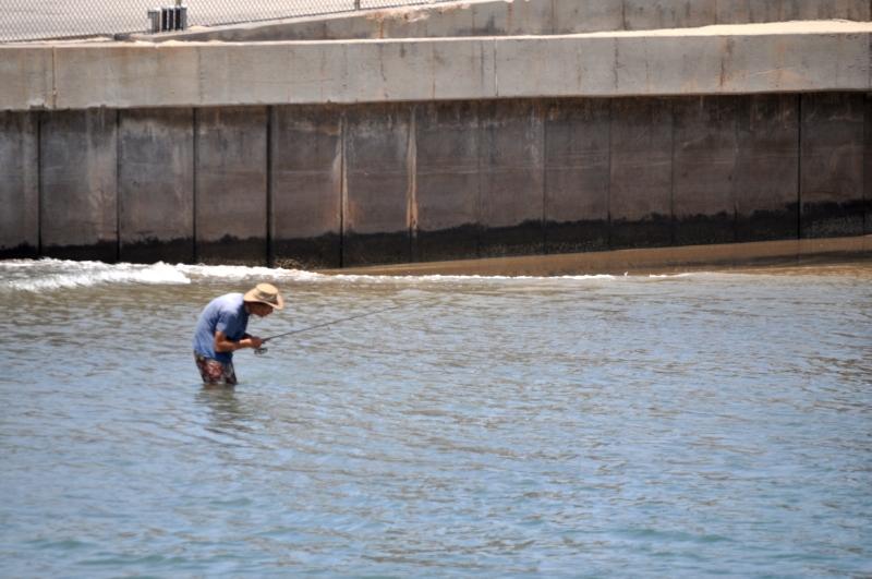 Serenading the Fish (my photographic memoirs)
