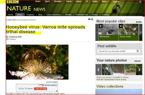 Honeybee virus - Varroa mite spreads lethal disease (from BBC News)