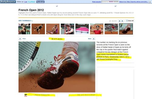 Open Tennis Tournament, PAris, June 6, 2012 (from Daily Source): Sports Photography