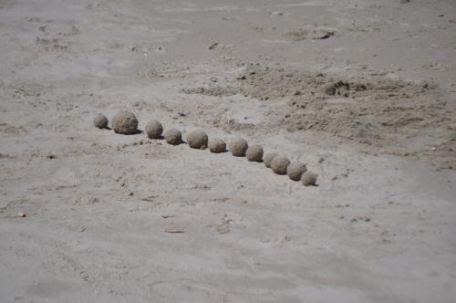 Fresh Sand-balls