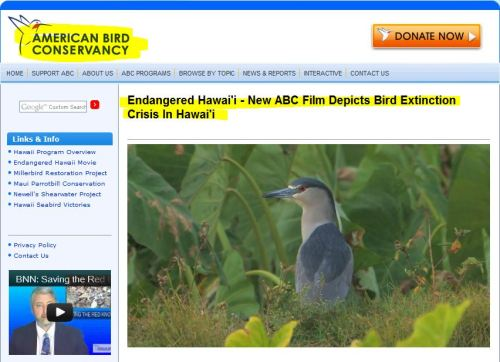 Endangered Hawai'i - New ABC Film Depicts Bird Extinction Crisis In Hawai'i