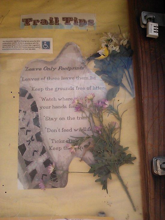 Turnbull Canyon Display: Flora, Fauna and regulations