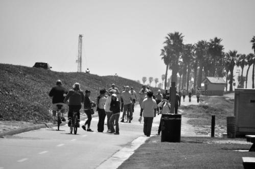 Dog Beach - Spring Walk Day