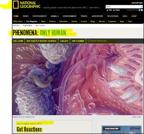National Geographic - Phenomena_Only Human_Gut Reactions
