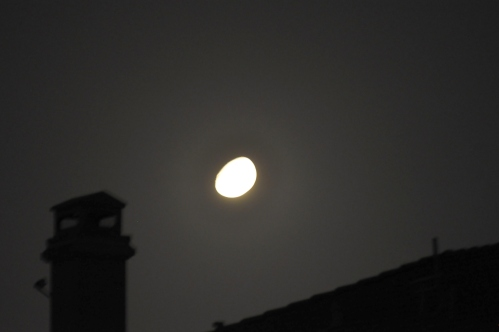 Midnight Moon (My Photography Collection)