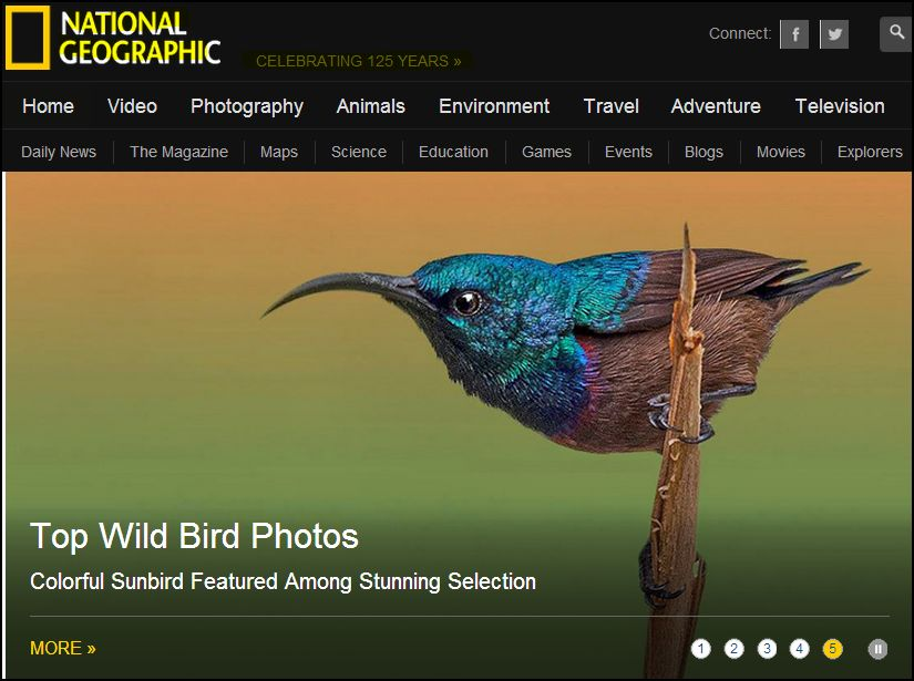 NATIONAL GEOGRAPHIC -_- ACCESS HERE