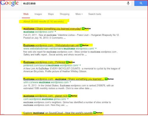 "Captivation: Did you ever ""Google Search"" your website? I did: Check this out (About 29,000 results in 0.16 seconds)"