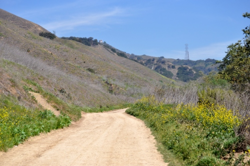 Water Tower from Turnbull Canyon Trail (small, far, hard to reach? Oh No!