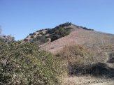 green hilltop