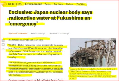 Exclusive -_- Japan nuclear body says radioactive water at Fukushima an 'emergency'- From Reuters
