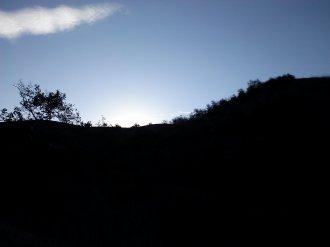 Early Morning Long, Cool Shades