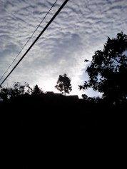CAM01115- Early morning light