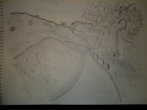Turnbull Cyn. Trail - Pencil Sketch (My Art Collection)