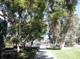 September Morning Nature shots in Bellflower, California