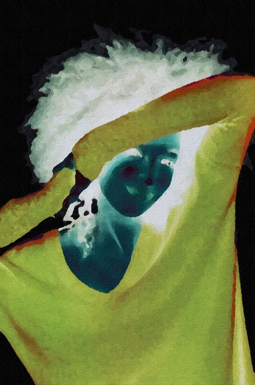 http://euzicasa.files.wordpress.com/2013/10/hidn-seak-negative-oil-painting-digital-my-art-collection.jpg