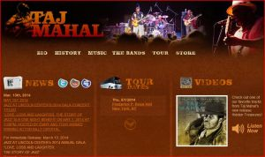 Taj Mahal website (You're one click away from the website)