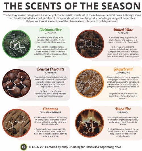 the scents of the season