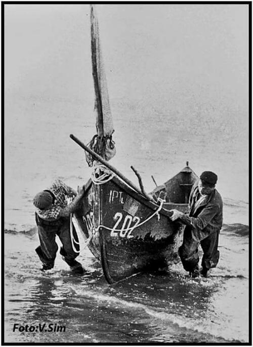 Foto Viorel Simionescu :  Razelm 1971 _ In plin efort_ pescari tragand lotca la mal