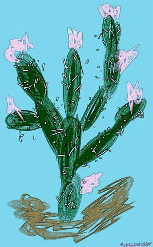 My cactus in flower