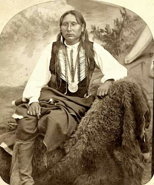 Chief Big Tree. Kiowa. 1870s. Photo by W.P. Bliss. Source - Southern Methodist University, Lawrence T. Jones III Texas photography collection.