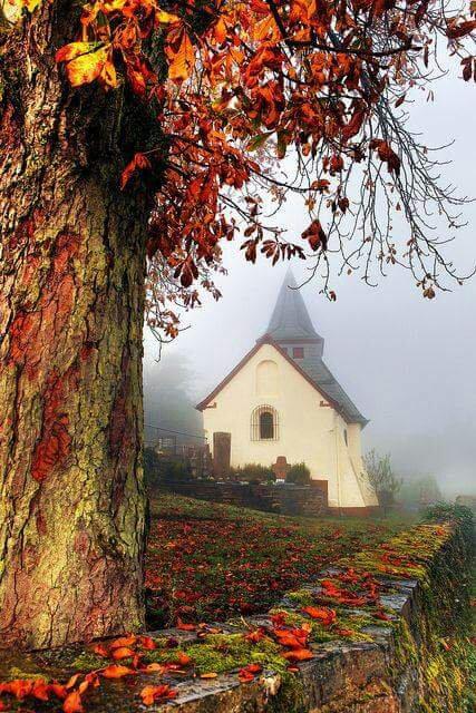 Un gând frumos poate fi ca o biserică în care omul îşi odihneşte sufletul.- Regina Maria -_______________________♕ Omul, Mintea & Sufletul ♕