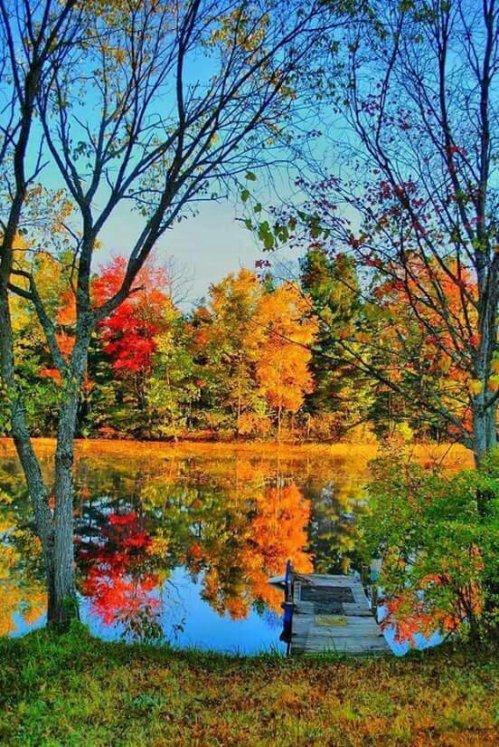 Toamna este pictorul culorilor ce ne fac viața frumoasă. https://www.youtube.com/watch?v=LPn0KFlbqX8