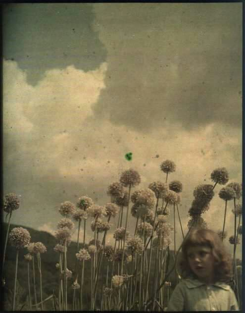 Autochrome by Thomas Shields Clarke from ca. 1910, recently rediscovered in the archives of the Pennsylvania Academy of the Fine Arts