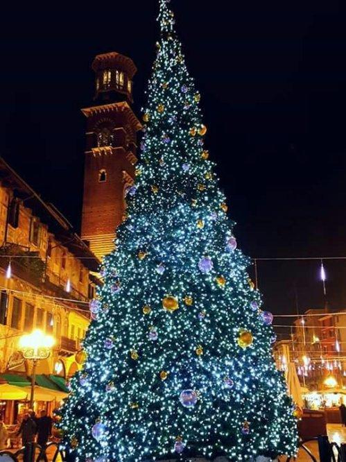Christmas tree in Verona, Italy !