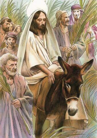 Domenica delle Palme Il mio desiderio è di pace, amore e serenità a tutti voi!