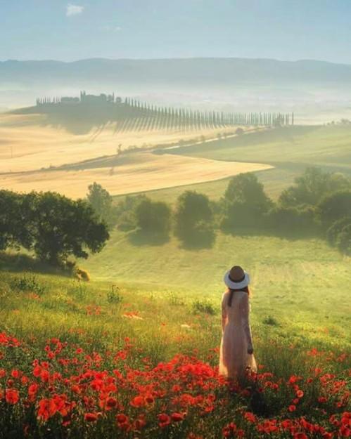 Tuscany, Italy !