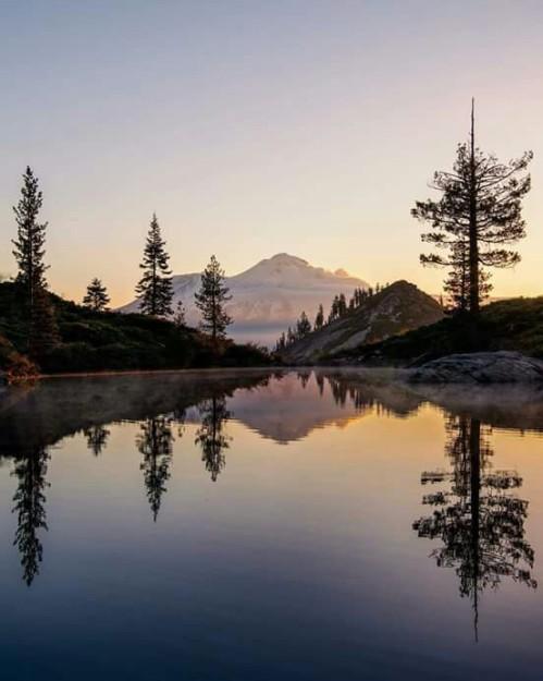 Todays California sunrise over Shasta Lake. - by Bruce Getty