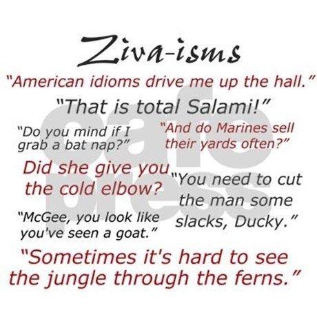 NCIS: ZIVA-ISMS