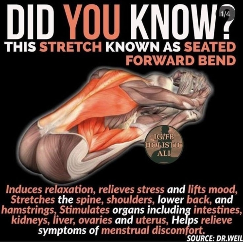 Did you know? This stretch known as seated forward bend...will do wonders for you!