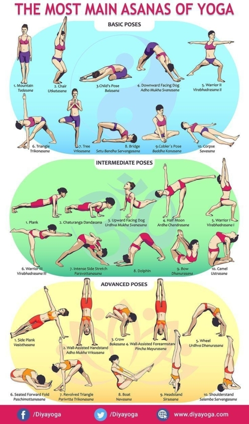 Main Asanas of Yoga