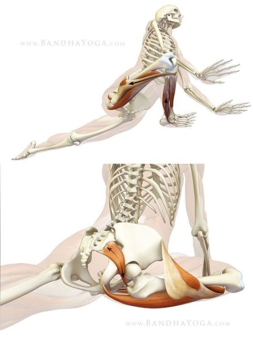 How to do Pigeon pose (Kapotasana)