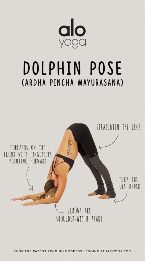 Yoga: Dolphin Pose (Ardha Pincha Mayurasana)