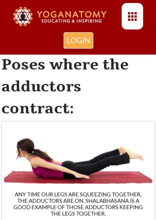 Poses where adductors are lengthend, and poses where they contract