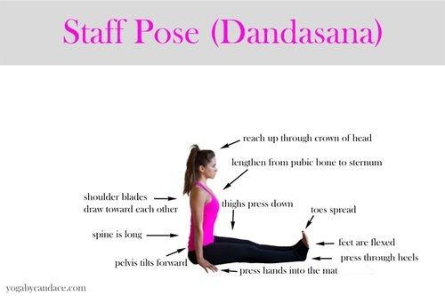 Staff pose (dandasana)