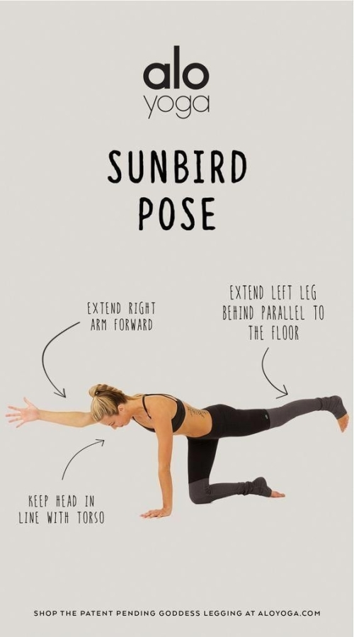 Yoga: the sunbird pose