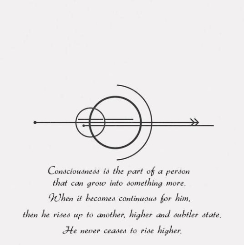 What is... CONSCIOUSNESS...