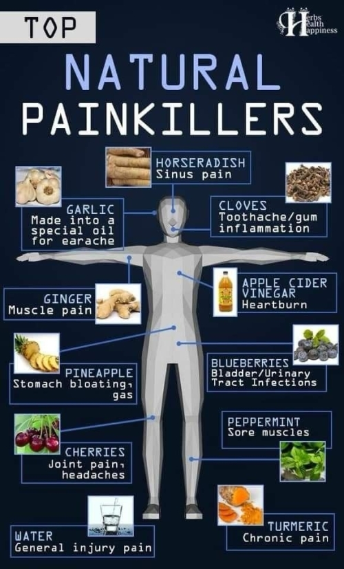 HEALTH AND LIFESTYLE: NATURAL PAINKILLERS