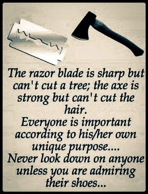 Quote: razor blade v Axe