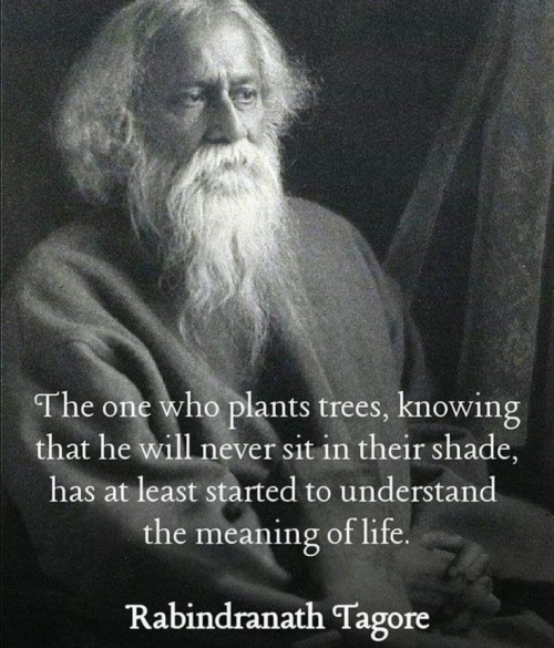 Quote: The one who plants trees...(Rabindranath Tagore)