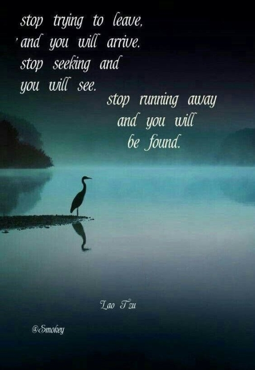 Quote: Stop trying to leave...Lao Tzu